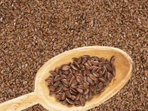 Linseeds on a spoon Royalty Free Stock Image
