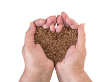 Linseeds in woman hands Stock Photography