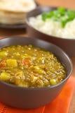 Linsen-Curry lizenzfreie stockfotografie