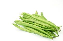 Linsen, ein Gemüsegarten der siamesischen Leute. stockfoto