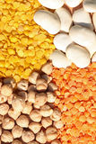Linsen und Bohnen Stockbild