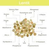 Linsennährstoff von Tatsachen und von Nutzen für die Gesundheit, Informationsgraphik Stockfoto