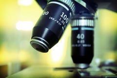 linsmikroskop Arkivbilder