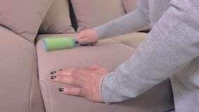 Lint roller on sofa close up. In room stock video footage