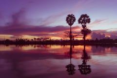 Lintel назад к светлому цвету в фиолетовом цвете очень довольно в вечере стоковое изображение rf