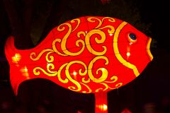 Linterna china de los pescados del Año Nuevo del Año Nuevo del festival de linterna Fotografía de archivo libre de regalías