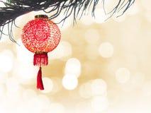 Linterna china en aislante del árbol de pino sobre bokeh de oro Imagen de archivo