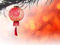 Linterna china en aislante del árbol de pino sobre el bokeh rojo para el chino Foto de archivo