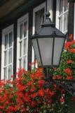 Linterna con los geranios Fotografía de archivo libre de regalías