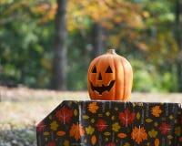 Linterna de Halloween Jack o en mantel de la caída Fotos de archivo