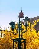 Linterna de la calle en un fondo amarillo del arbusto fotos de archivo