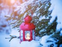 Linterna de la Navidad en ramas del abeto con nieve Fotos de archivo