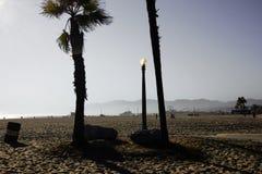 Linterna de la palmera y de la calle en la playa de Venecia imagen de archivo libre de regalías