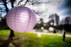 Linterna de papel/chuchería rosadas, con otras borrosa hacia fuera en el fondo y el sol que brillan a través Foto de archivo libre de regalías