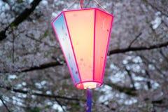 Linterna de Sakura Festival en el parque de Omiya, Saitama, Japón en primavera Imagen de archivo