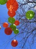 Linterna en árbol Imagen de archivo
