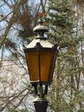 Linterna en el parque Foto de archivo