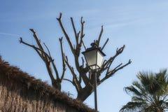 Linterna en fondo del cielo Foto de archivo libre de regalías
