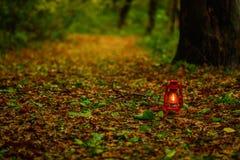Linterna en las hojas de otoño Imagen de archivo