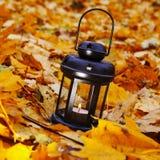 Linterna en leafes brillantes del otoño Fotos de archivo