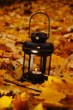 Linterna en leafes brillantes del otoño Foto de archivo