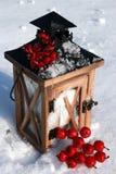 Linterna en nieve con Crabapples foto de archivo libre de regalías