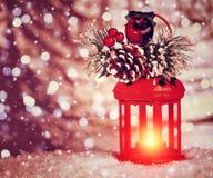 Linterna hermosa de la Navidad Imagen de archivo