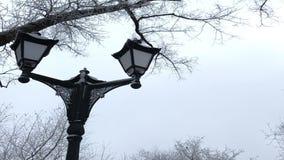 Linterna pasada de moda en un parque del invierno Todo alrededor se cubre con helada gruesa almacen de metraje de vídeo