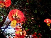 Linterna roja Foto de archivo