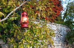 Linterna roja brillante hermosa de la Navidad en una rama de árbol Imagen de archivo libre de regalías