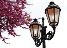 Linterna vieja Imagen de archivo libre de regalías