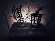 Linterna y la mariposa Foto de archivo