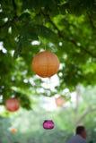 Linternas anaranjadas y rosadas y luces que cuelgan de un árbol verde Foto de archivo