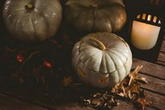 Linternas blancas del enchufe o con las hojas de otoño por la vela en la tabla Fotografía de archivo libre de regalías