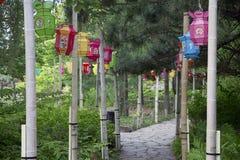 Linternas chinas del jardín fotografía de archivo
