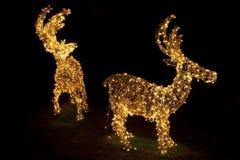 Linternas de la Navidad Fotografía de archivo