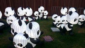 Linternas de la panda - festival de linterna chino del Año Nuevo Foto de archivo libre de regalías