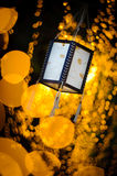 Linternas de papel Fotografía de archivo libre de regalías