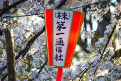 Linternas de Sakura Festival y flores de cerezo lleno-florecidas en Ueno ParkUeno Koen en el distrito de Ueno de Taito, Tokio, Ja Fotos de archivo