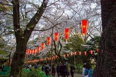 Linternas de Sakura Festival y flores de cerezo lleno-florecidas en Ueno ParkUeno Koen en el distrito de Ueno de Taito, Tokio, Ja Foto de archivo