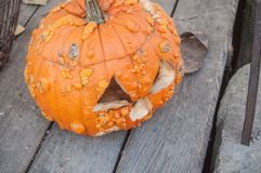 Linternas decorativas de las calabazas para Halloween Fotos de archivo libres de regalías
