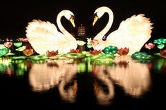 Linternas del jardín del furong del datang de Xi'an Imagen de archivo libre de regalías