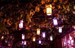Linternas en un árbol - Turquía Imagen de archivo