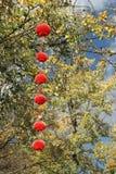Linternas rojas Foto de archivo