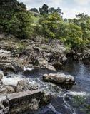 Linton Falls cerca de Grassington Foto de archivo libre de regalías