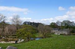 Linton Falls nära Grassington i de Yorkshire dalarna och Linton Falls Fotografering för Bildbyråer