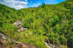 Linville峡谷在春天 图库摄影