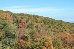 Linville, NC的秋天颜色 库存照片