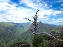 Linville Gorge, NC Royalty Free Stock Photos