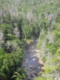 Linville wąwozu rzeka Zdjęcia Royalty Free
